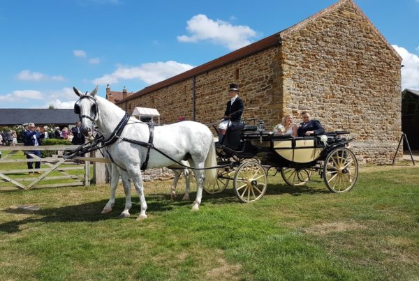 horse and carriage outside of a barn