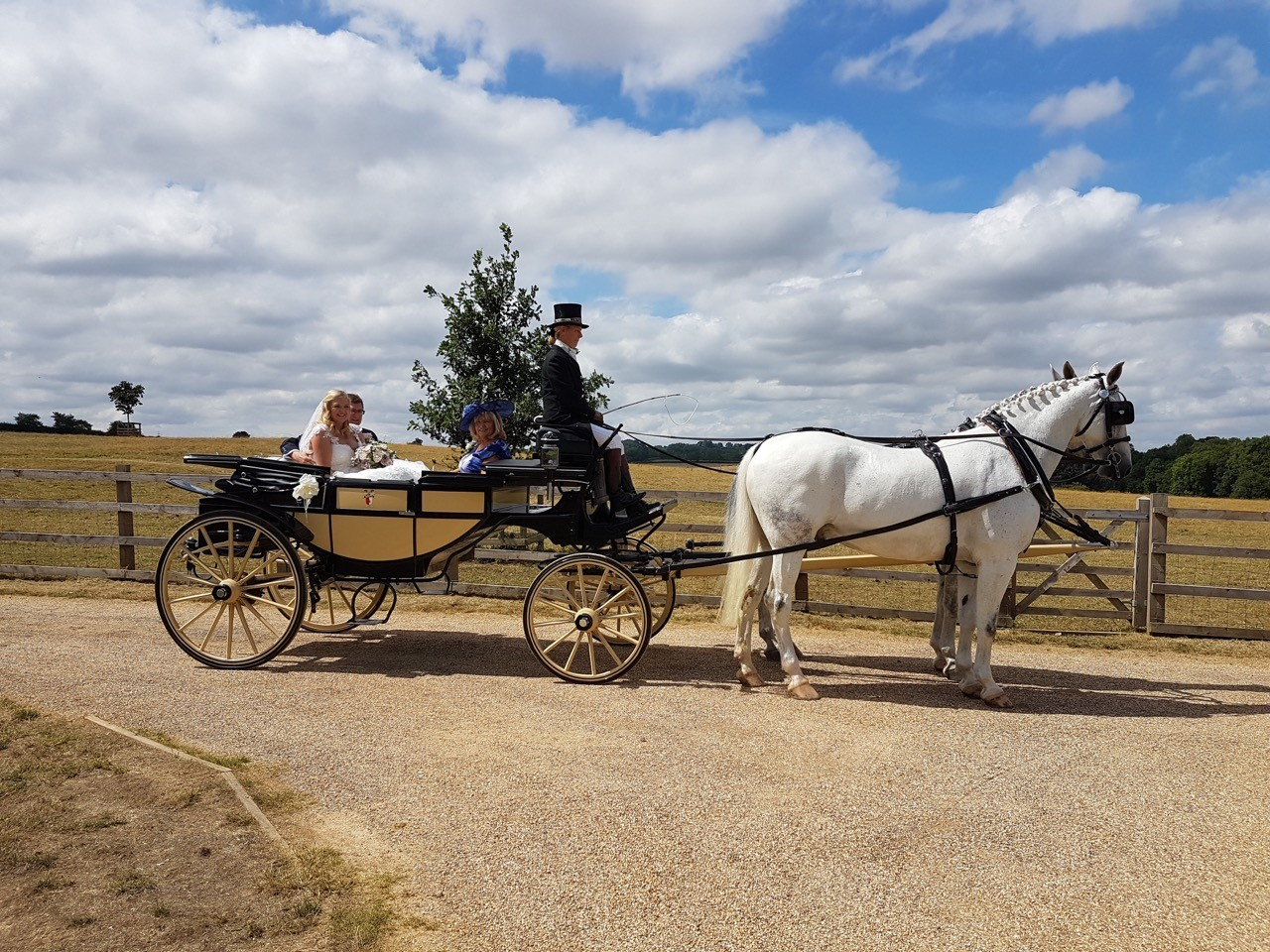 Bride and groom riding in a horse and carriage
